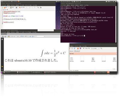 ubuntu1010-3.jpg